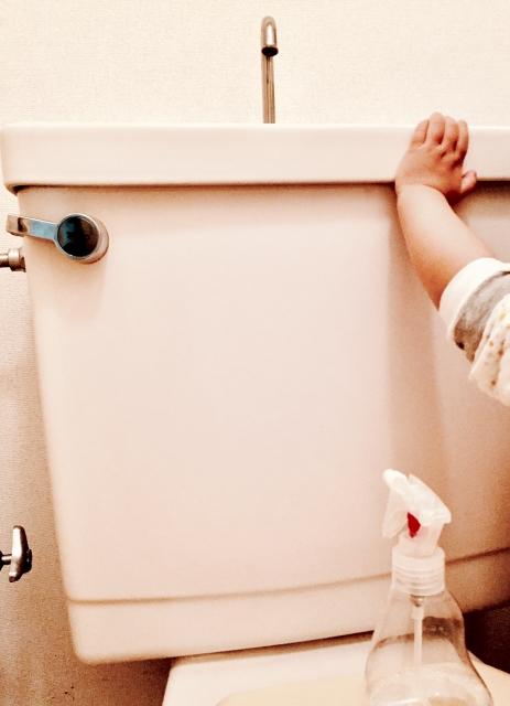 アレレー''トイレの水が流れない‼