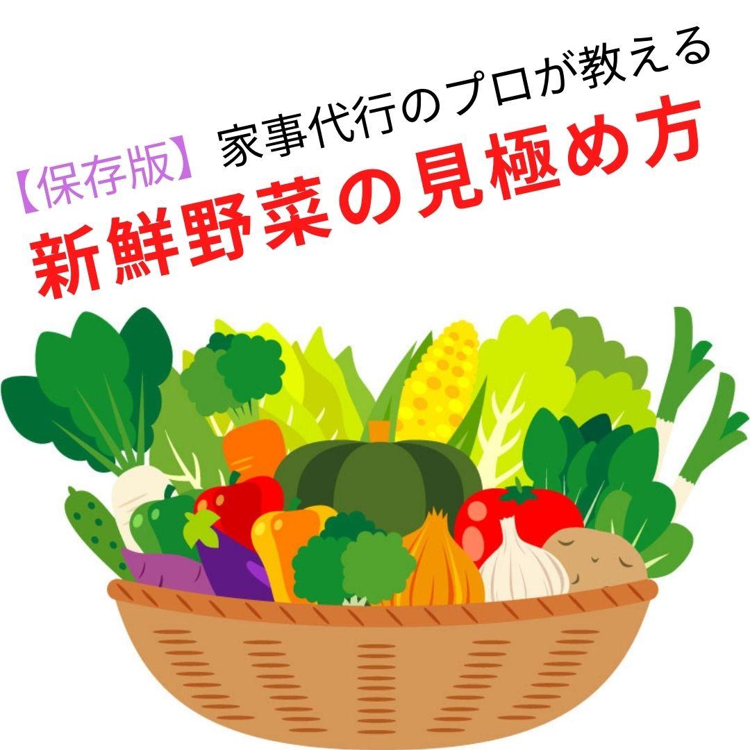 【保存版】家事代行のプロが教える おいしい新鮮野菜の見極め方